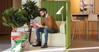 Sedam prednosti drzanja biljaka u kancelariji