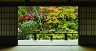 "Kolekcija Interface tepih podova Embodied Beauty™ - inspirisana japanskim konceptom ""Ikigai"""