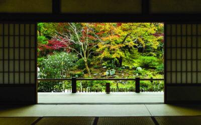 "Kolekcija Interface tepih podova Embodied Beauty™ – inspirisana japanskim konceptom ""Ikigai"""